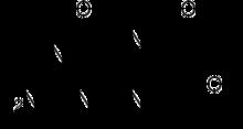 Tetrahidrobiopterina